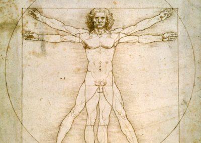 Anatomia e Fisiologia dell'Insieme